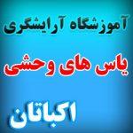 آموزشگاه آرایشگری اکباتان ، آموزشگاه آرایشگری منطقه 5 تهران