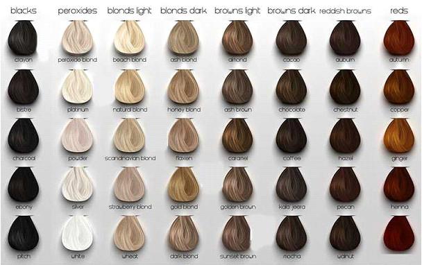 کاتالوگ مورد استفاده برای انتخاب رنگ مو