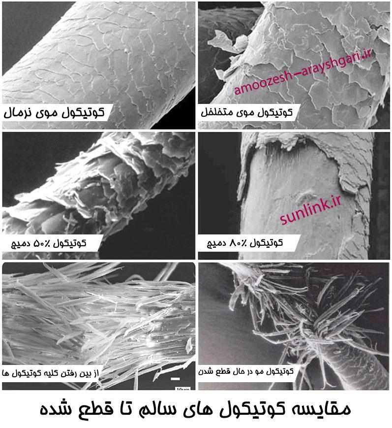 انواع کوتیکول مو نرمال ،کوتیکول مو متخلخل، کوتیکول مو دمیج و آسیب دیده